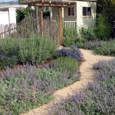 Landscapinginvolves more than merely placing a shrub or tree wherever you  want. When you approach landscaping with only the idea of planting what you  like, ... - Smart San Diego Landscape Design Tips - Juniper Landscape