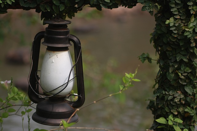 How to Decide Between Solar-Powered and Low-Voltage Outdoor Landscape Lighting