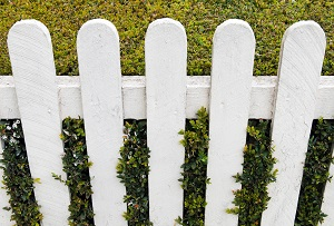 What Are The Advantages Between Wood and Vinyl Fencing?
